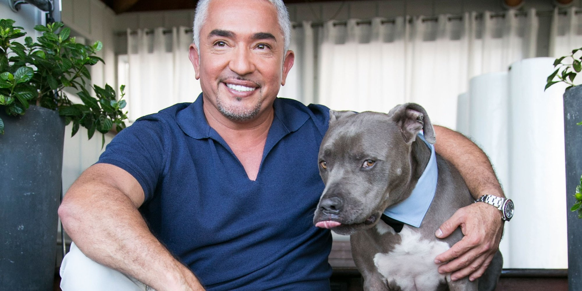 """WEST HOLLYWOOD, CA - MARCH 13:  Dog behaviorist Cesar Millan attends the celebration for Season 2 of """"Cesar 911"""" on Nat Geo Wild at SkyBar at the Mondrian Los Angeles on March 13, 2015 in West Hollywood, California.  (Photo by Vincent Sandoval/WireImage)"""